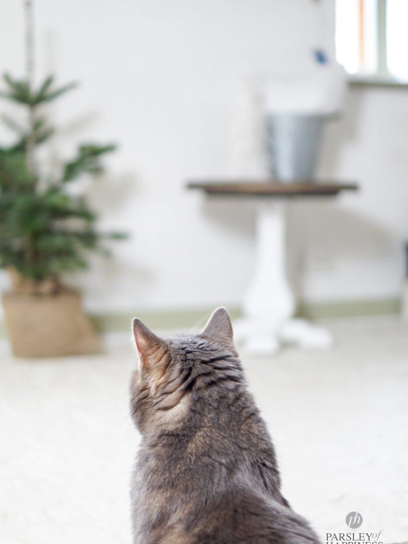 Katze Weihnachten Skandinavien Norwegen Deko Dekoration
