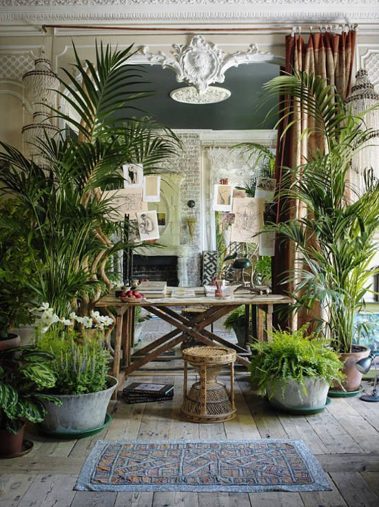 Indoor Jungle boho chic
