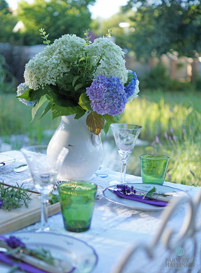 Hortensien am Gartentisch