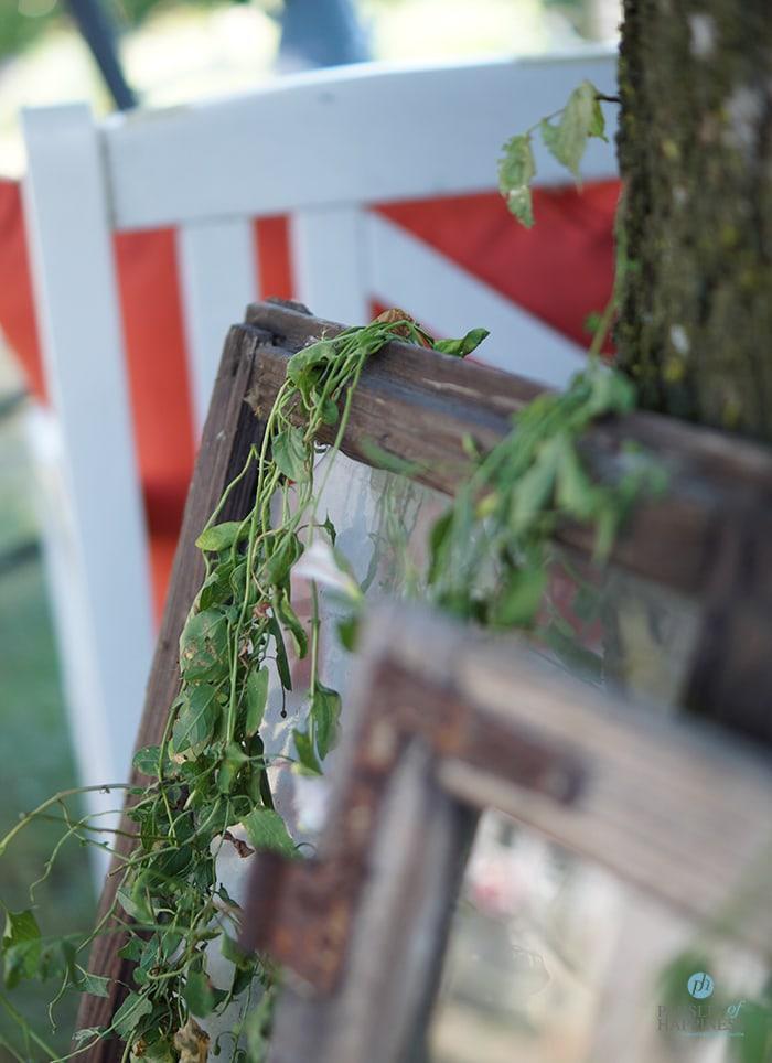 Alte Holzfenster als Gartendeko