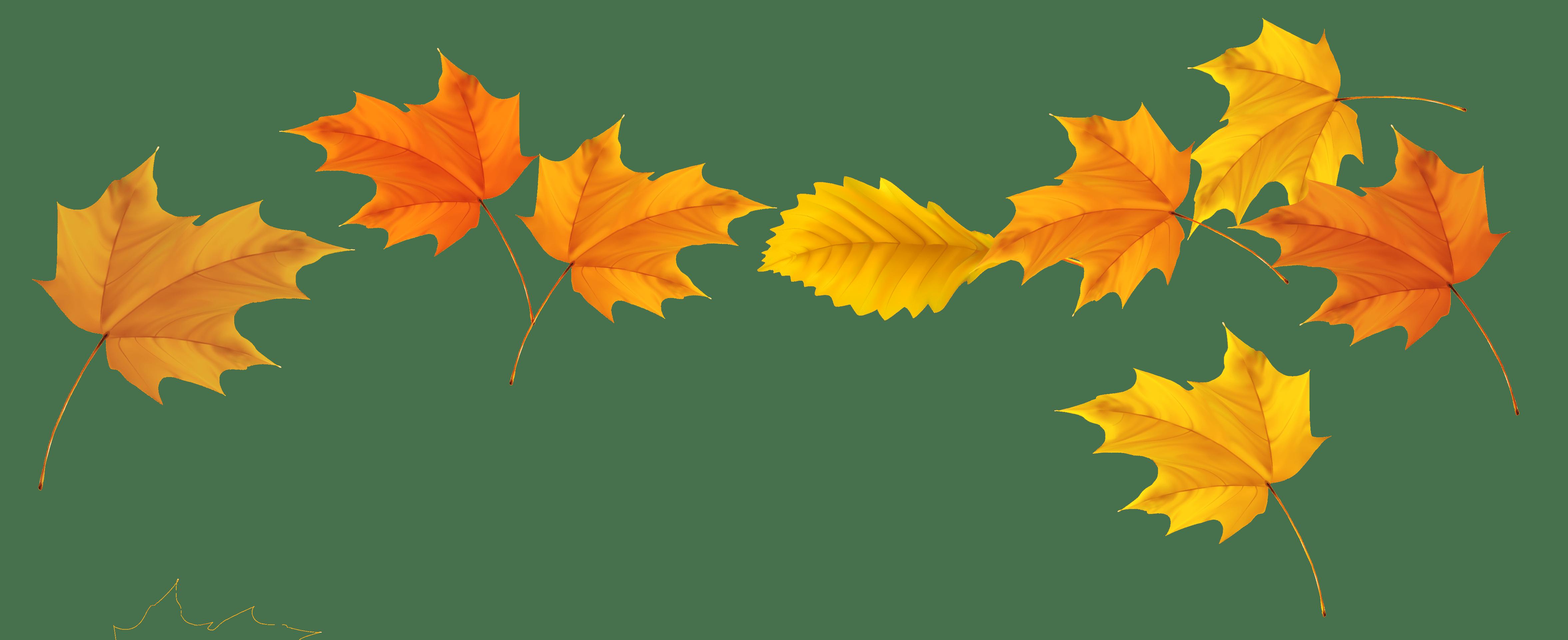 høst, interiør og dekor