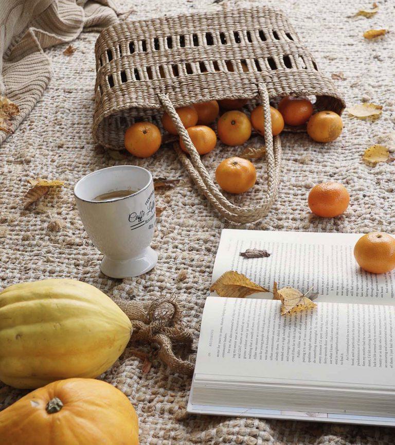 Herbst Kürbis buch