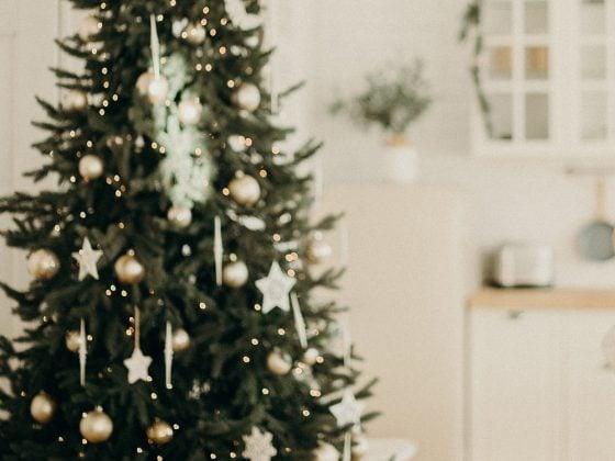 Juletre i hvitt uklar