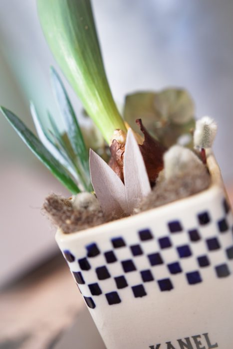 Osterhase im Blumentopf