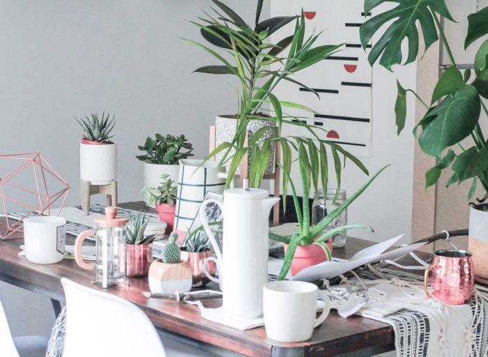 Urban jungle som bordpynt med rosegull